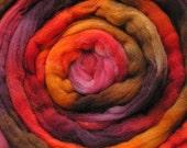 200g Space-Dyed Merino D' Arles Wool Top - Plum Pudding
