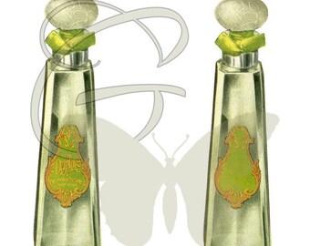 Printable Label Beauty Artwork Perfume Illustration Digital Download Crafting Clip Art
