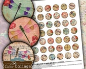 Dragonflies - Digital Collage Sheet - 1 Inch Circles - Printable Images for Pendants Bezels Glass Cabochons and Magnets
