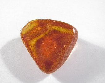Piece of the Baltic amber. EA258