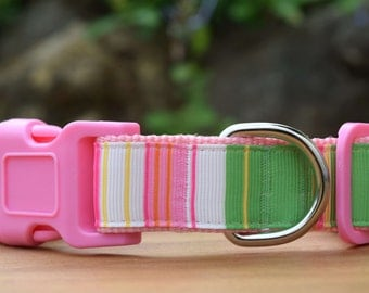 """Spring Stripes Dog Collar, Pink Collar for Dogs, Australian Made Pet Collar, 1"""" wide, available in Small, Medium, Large and Extra Large"""
