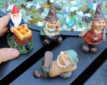 Garden gnome-Resin gnome-fairy garden decor-Terrarium supplies