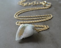 Druzy Fossil Seashell Necklace Gold