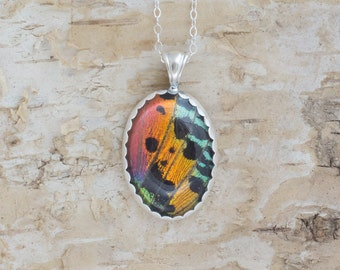 Real Sunset Moth Wing Jewelry Sterling Silver