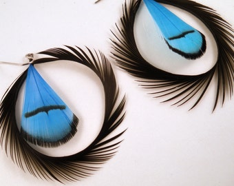 Natural elegance Feather Earrings