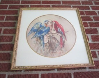Vintage 1930s Beautiful Large Original Framed Macaw Parrot Painting Dated 1937