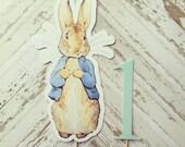 Peter Rabbit Cake Topper- smash cake, first birthday
