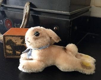 Steiff Rabbit, Steiff Bunny. Steiff Baby Bunny.