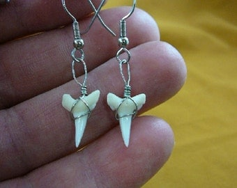 3/4 inch white Modern Oceanic White Tip Shark Lower Tooth Teeth dangle earrings silver wired JEWELRY S814-5