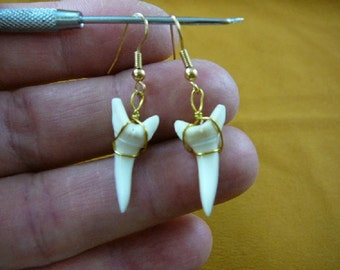 7/8 inch white Modern Mako Shortfin Shark Lower Tooth Teeth dangle earrings gold wired JEWELRY S812-11