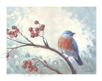 Bird Paintings, Bluebird 9x12 inches on Panel