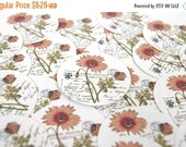 Stickers Envelope Seals Gerber Daisy SES43