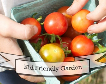 Kid Friendly Garden Seeds - Gift Set in Tin Box