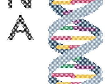 DNA Strand Cross Stitch Pattern PDF