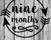 SVG, PNG, Monthly Milestone, Silhouette Cut File, Cricut Cut File, vector, Birthday, Month Onesie, Nine Months