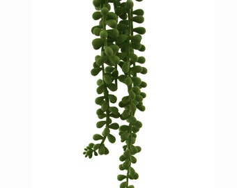 Hanging Bean Leaf Pick - Faux Succulent - Artificial Succulents