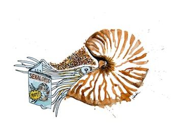 minimalist watercolor print: Naughy Nautilus