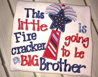 Big Brother/Sister 4th of July Shirt, Big Brother Shirt, Big Sister Shirt, 4th of July Shirt