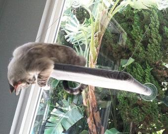 Swirls, Rain - Curious Cats Window Perch