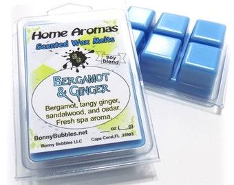 BERGAMOT and GINGER Wax Melt - 6 breakaway cubes - soy blend - spa fresh - clamshell type