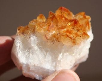 Citrine Cluster Crystal Specimen
