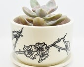 Wheel Thrown Porcelain Planter and Drain Dish with Hand Painted Cherry Blossom Pattern and Pink Inside