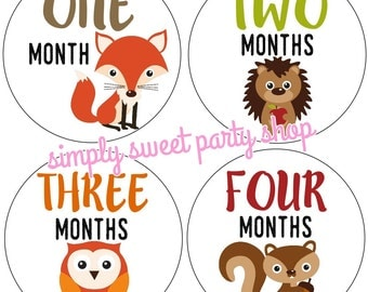 baby boy monthly baby stickers, baby animal month stickers, woodland creature baby month stickers, set of 12 stickers