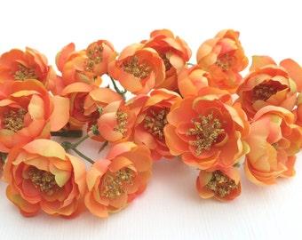 24 APRICOT Wild Roses- Flower Crown, Halo, Wedding Flowers, Artificial Flower, Silk Flowers