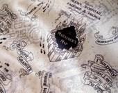 Mischief Map Cloth Diaper