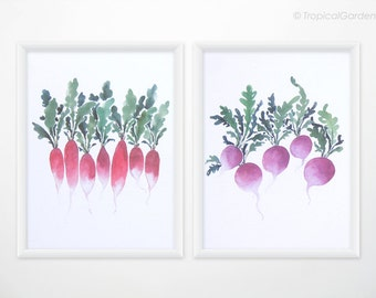 Radish Art Set of 2 - Watercolor food painting, vegetable print - 8x10 OR 8x11 Kitchen Art / Botanical Home Decor