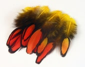 Sunset Fire Orange Yellow Craft Feathers Craft Supplies Yellow Orange Bright Color Laced Hen Feathers Unique Feathers Bright Feathers 10 Pcs