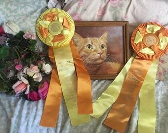 lot 2 Vintage CFA CAT Show Satin Ribbon Rosette Award Best Cat   Shorthair Sunshine Yellow Orange