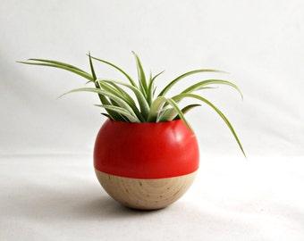 Sphere Pod Planter // Blood Orange + Wood