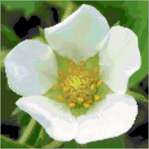 Strawberry Flower Cross Stitch Pattern - Digital ...