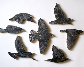 Set of 7 European Starlings
