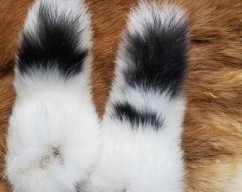 Rabbit Tail - Naturally Dried - Rex Fur - Spotted White