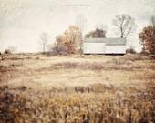 Farmhouse Decor, White Barn Print or Canvas Wrap, Autumn Landscape, Gold Wall Art, Golden Yellow Decor, Barn Art, Farm Art, Farm Landscape.
