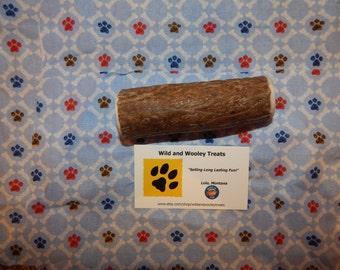 """Organic Large Elk Antler Dog Chew """"Made in Montana"""" (Lot C37)"""