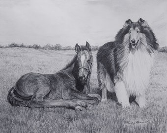 "New Limited Edition Collie print ""Kindred Spirits"" by Cindy Alvarado"