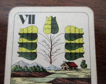 Antique Playing Card - cottage, lake, floral, Ferdinand Piatnik, VII