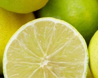BERGAMOT Essential Oil, Pure, Aromatherapy / Therapeutic Use 2 oz. size