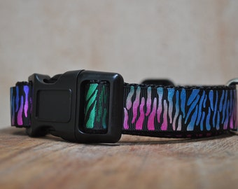 Dog Collar - Party Animal -  50% Profits to Dog Rescue