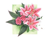 Roses and Lilies watercolour painting - print 5 by 7 size smallest print - RL1116 - Botanical painting - Pink Lilies watercolor painting