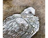 "Christian Wall Art - Dove Art Print of Original Painting - Christian Art - 8 1/2""x11"" Print"