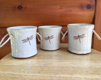 Dragonfly Herb Planters