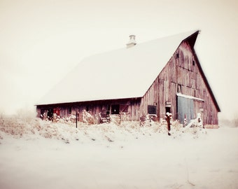 Shelter from the Storm / Barn Art / Farmhouse decor / Home Decor / Rustic Art /Barn photo / Wall Art