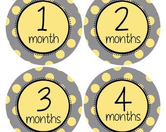 Gender Neutral Sticker Yellow and Grey Baby Sticker Polka Dot Stickers Baby Age Sticker  Baby Photo Prop Nursery Decor Gray Yellow (628)