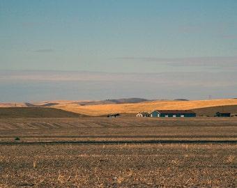 Walla Walla field photo, Pastoral canvas, fields photo, Washington photo, Walla Walla canvas, Walla Walla print, Rural photo, oversized art