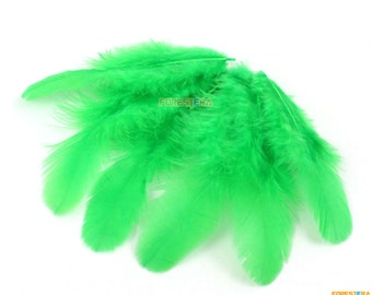 100 Pieces Green Feather 4-9cm (YM204)