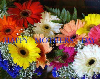 HAPPY MOTHERS DAY colorful  bouquet  of Gerbera daisies 5x7 photo greeting card, blank inside ready to frame for any occasion.